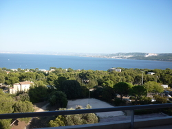Location Appartement Martigues