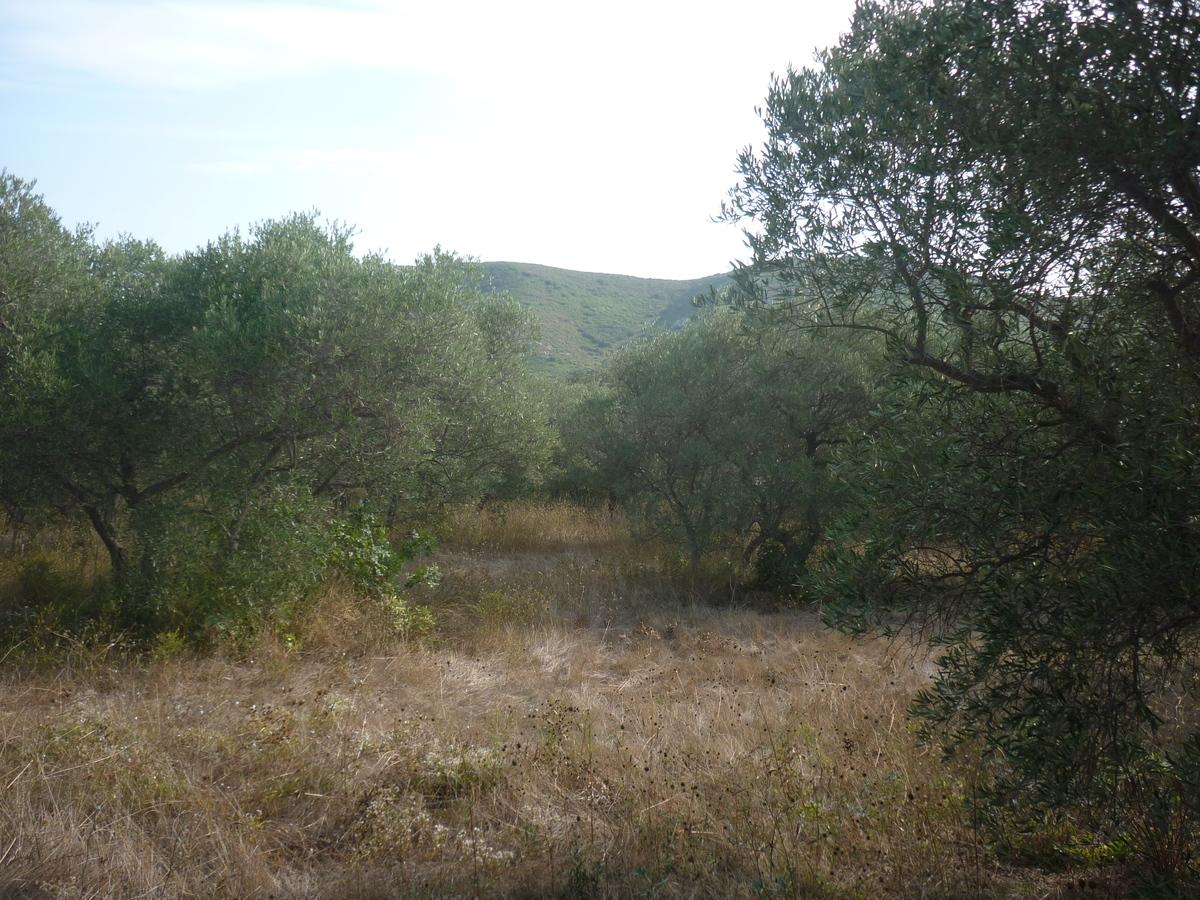 Terrain - Eyguières